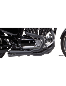 POTS TWO BROTHERS RACING 2-EN-1 Finition noire céramique, Silencieux génération II - Pour 2014 au présent Sportster